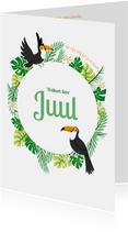 Babykaart jungle toekan groen