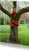 Beterschap Knuffel een boom