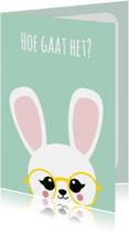 Beterschapskaart konijn