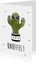 Beterschapskaart met een stekelige cactus met tekst knuffel!
