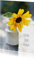 Bloem liefde licht-isf
