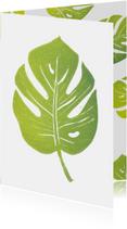 Botanische woonkaart monstera blad