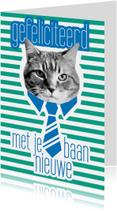 Brandal Nieuwe Baan