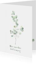 Condoleancekaarten - Condoleance kaart met eucalyptus tak - natuur