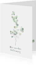 Condoleance kaart met eucalyptus tak - natuur
