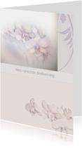 condoleance met orchidee