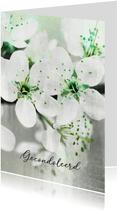 Condoleancekaart fris wit groen bloesem