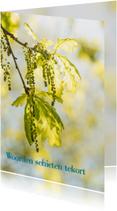 Condoleancekaarten - Condoleancekaart Groen blad MM