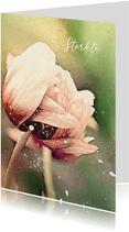 Condoleancekaart tulpen in de wind