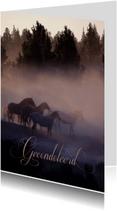 Condoleancekaart van paarden in de mist