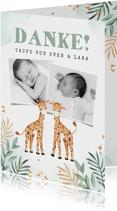 Danksagung Zwillinge Fotos niedliche Giraffen