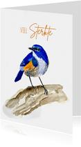Dierenkaart blauwe vogel op tak