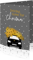 Driving Home For Christmas met boom en auto