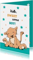Felicitatie baby leeuw ster IH