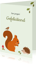 Felicitatie - Eekhoorn met egel en vogel