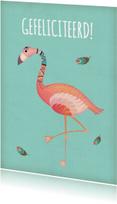 Felicitatie flamingo - BK