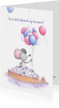 Felicitatie kleinkind op komst, beschuit met muisjes