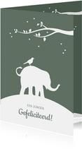 Felicitatie - Silhouet olifant met vogel