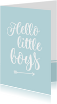 Felicitatie - tweeling hello little boys