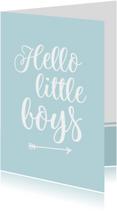 Felicitatie - tweeling hello little boys