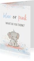 Felicitatiekaart 'blue or pink'