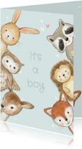 Felicitatiekaart geboorte jongen bosdieren met confetti