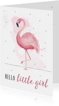 Felicitatiekaart geboorte meisje met hippe flamingo