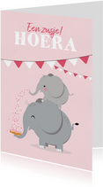 Felicitatiekaart geboorte meisje zusje olifantjes beschuitje