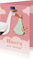 Felicitatiekaartje met ooievaar en baby meisje