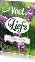 Fotokaart lavendel eigen tekst