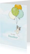 Geboortekaart jongen, kitten en ballonnen