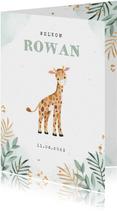 Geboortekaartje jongen giraf botanisch goud waterverf