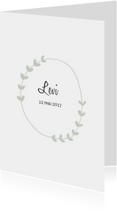 Geboortekaartje Levi - HM