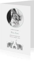 Geboortekaartje olifantjes met foto blauwgroen