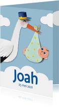 Geboortekaartje ooievaar met jongen
