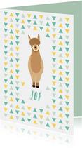 Geboortekaartjes - Geboortekaartje te schattige alpaca voor jongens