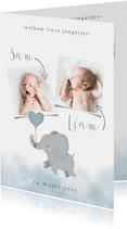 Geboortekaartje voor een tweeling met olifantje en waterverf