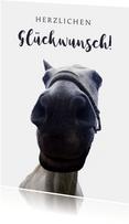 Geburtstagskarte mit Pferd lustig