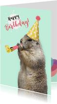 Geburtstagskarte Party-Murmeltier