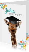 Glückwunschkarte 'Bestanden' Giraffe