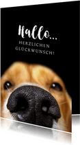 Glückwunschkarte Hundenase