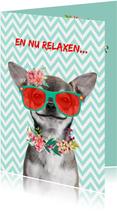 Grappige geslaagd kaart met hondje