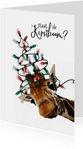 Grappige kerstkaart giraf met kerstboom van lampjes