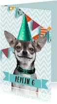 Grappige uitnodiging met hondje en slingers