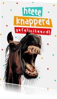 Grappige verjaardagskaart paard gefeliciteerd knapperd