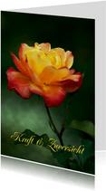 Grußkarte mit Rose Kraft & Zuversicht