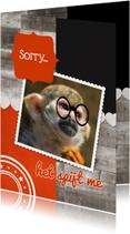Het spijt me aap - DH