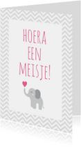 Hoera een meisje, olifantje