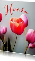 Jarig tulpen schilderstijl