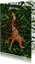 Jungle Love II